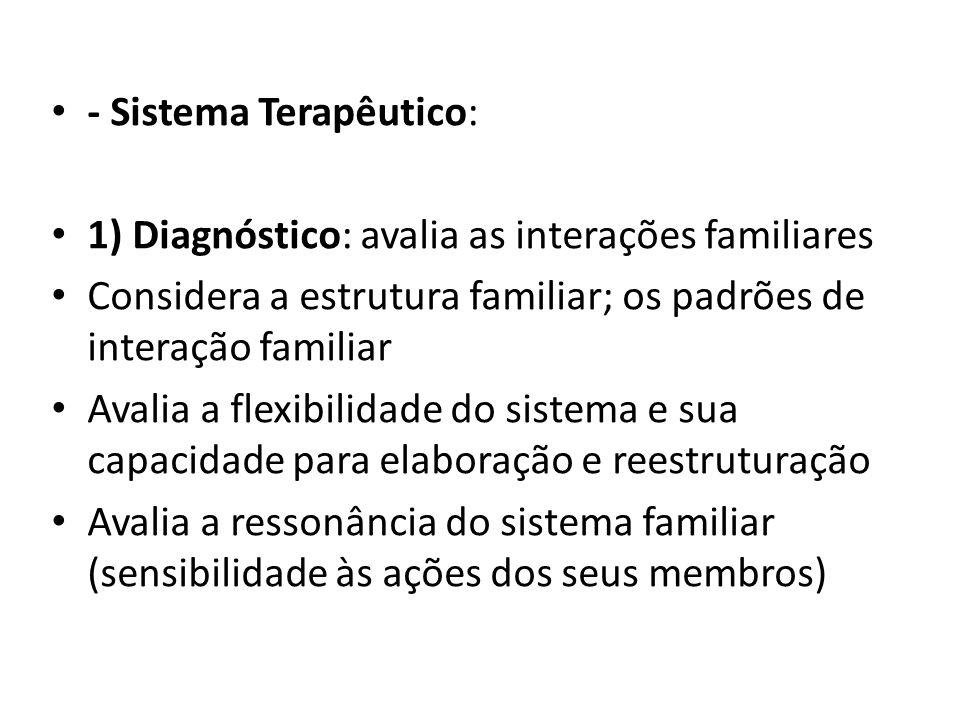 - Sistema Terapêutico: 1) Diagnóstico: avalia as interações familiares Considera a estrutura familiar; os padrões de interação familiar Avalia a flexi