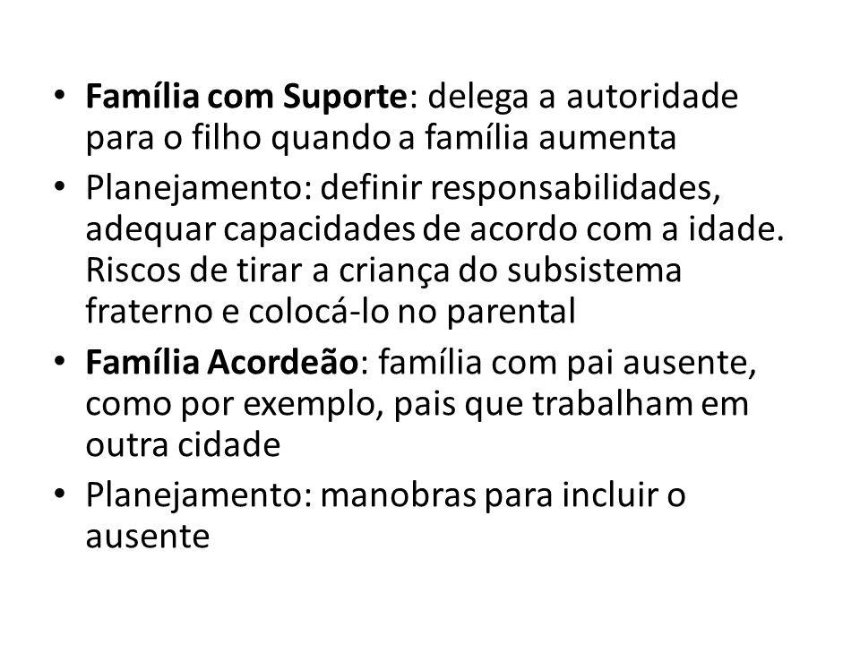 Família com Suporte: delega a autoridade para o filho quando a família aumenta Planejamento: definir responsabilidades, adequar capacidades de acordo