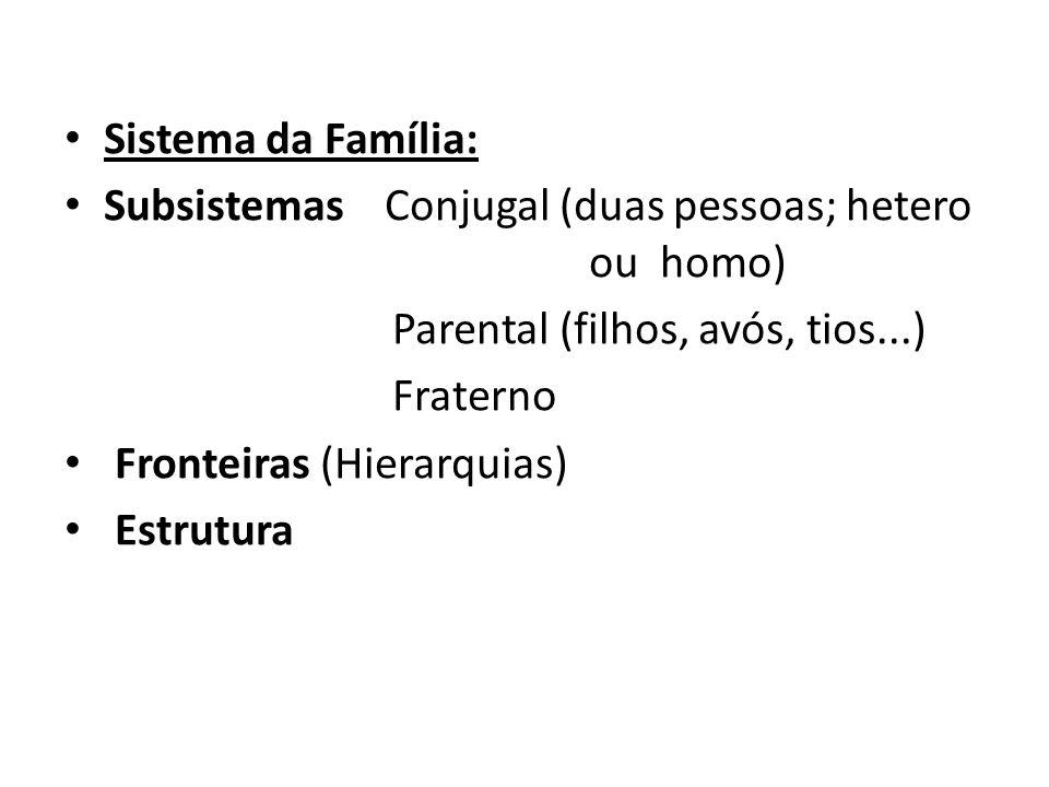 Sistema da Família: Subsistemas Conjugal (duas pessoas; hetero ou homo) Parental (filhos, avós, tios...) Fraterno Fronteiras (Hierarquias) Estrutura