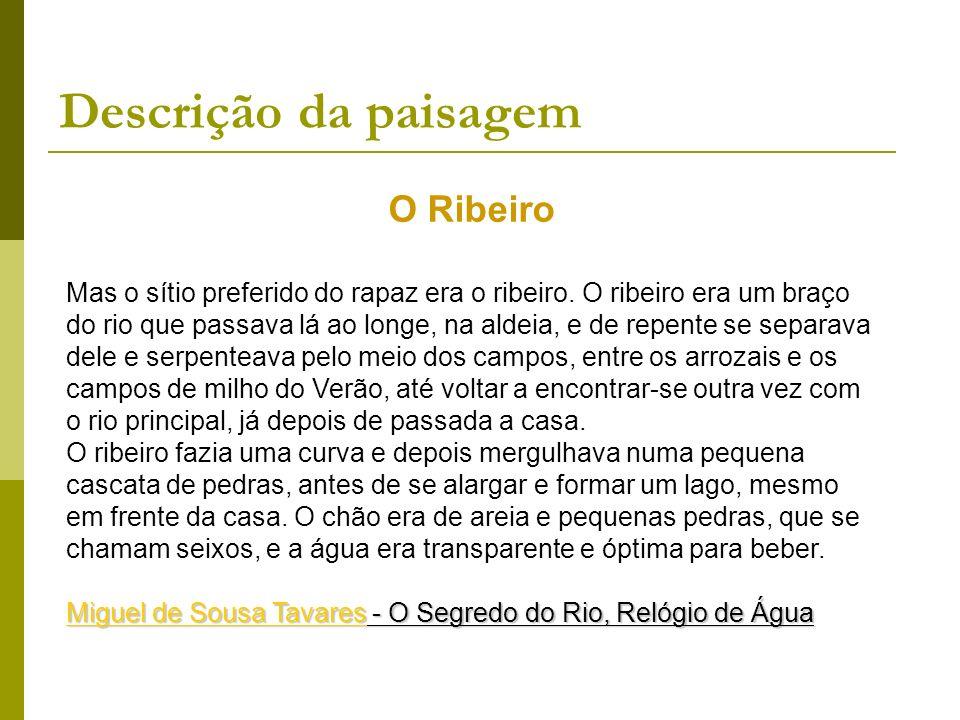 O Ribeiro Mas o sítio preferido do rapaz era o ribeiro. O ribeiro era um braço do rio que passava lá ao longe, na aldeia, e de repente se separava del