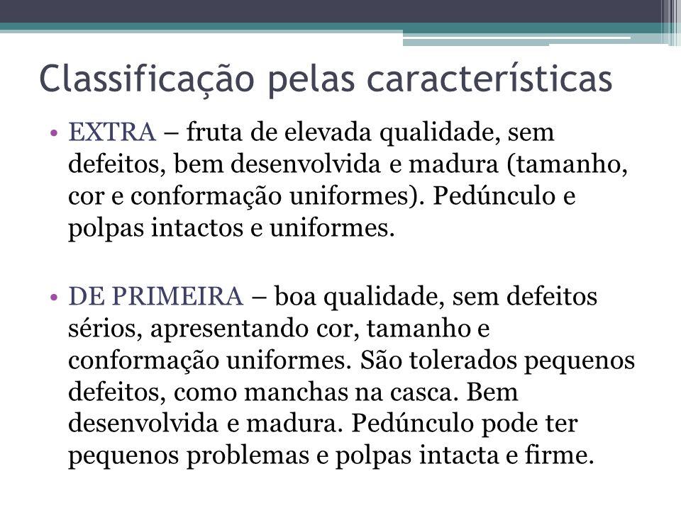 Cocção das frutas FRUTA ASSADA: banana, maçã COMPOTA DE FRUTA: fruta descascada, cortada ou picada, colocada em cocção em calda rala; deve apenas ser abrandada para não desintegrar.