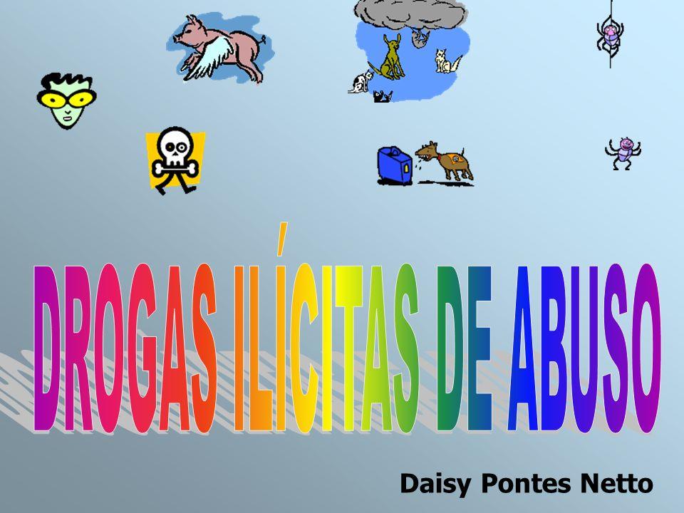 Daisy Pontes Netto
