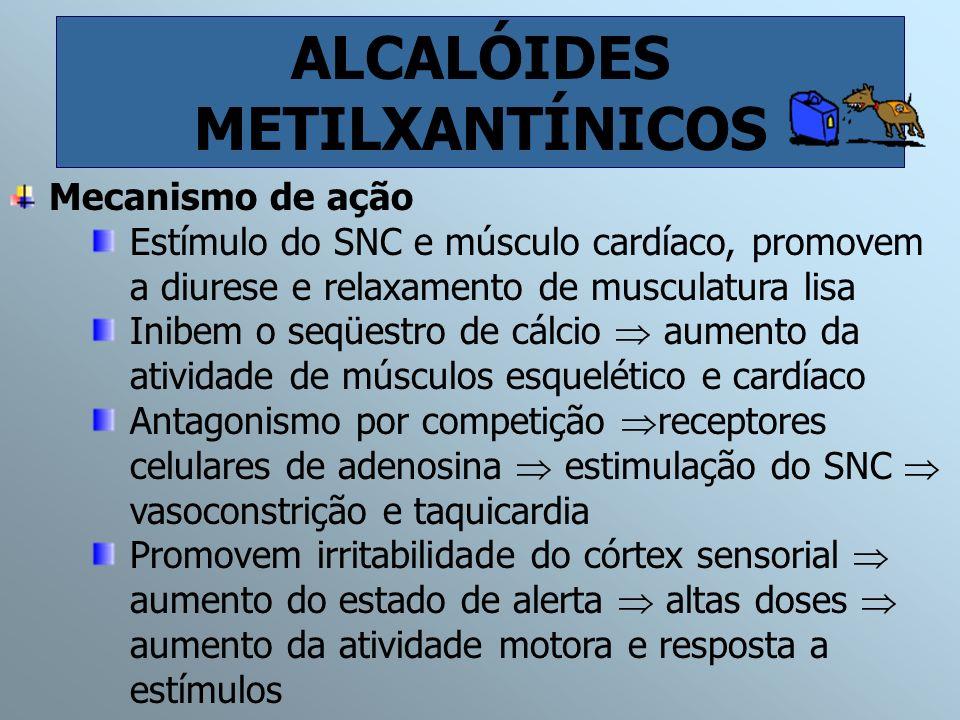 ALCALÓIDES METILXANTÍNICOS Mecanismo de ação Estímulo do SNC e músculo cardíaco, promovem a diurese e relaxamento de musculatura lisa Inibem o seqüest
