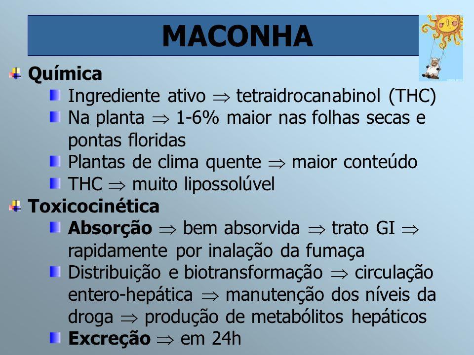 MACONHA Química Ingrediente ativo tetraidrocanabinol (THC) Na planta 1-6% maior nas folhas secas e pontas floridas Plantas de clima quente maior conte