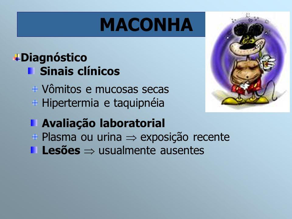 MACONHA Vômitos e mucosas secas Hipertermia e taquipnéia Diagnóstico Sinais clínicos Avaliação laboratorial Plasma ou urina exposição recente Lesões u