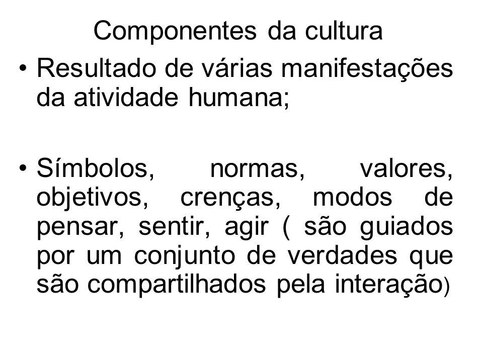 Componentes da cultura Resultado de várias manifestações da atividade humana; Símbolos, normas, valores, objetivos, crenças, modos de pensar, sentir,