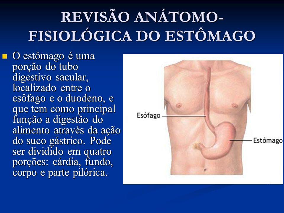 REVISÃO ANÁTOMO- FISIOLÓGICA DO ESTÔMAGO O estômago é uma porção do tubo digestivo sacular, localizado entre o esôfago e o duodeno, e que tem como pri