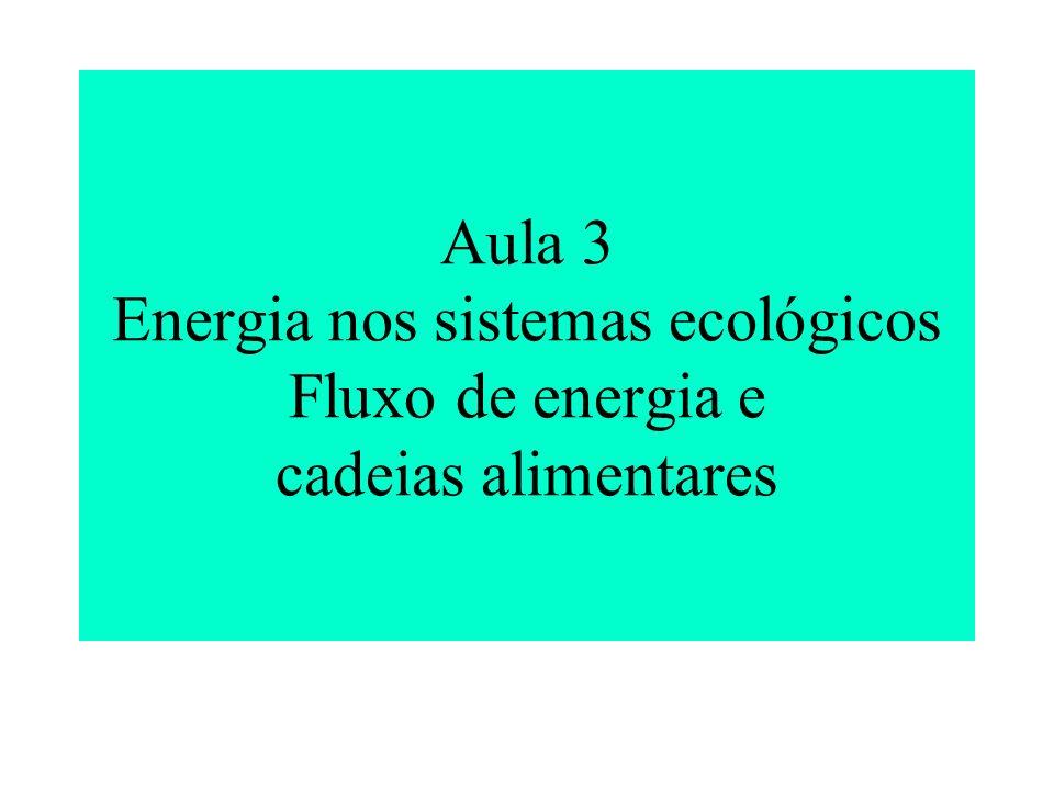 Aula 3 Energia nos sistemas ecológicos Fluxo de energia e cadeias alimentares