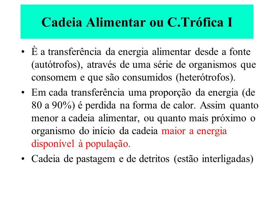 Cadeia Alimentar ou C.Trófica I È a transferência da energia alimentar desde a fonte (autótrofos), através de uma série de organismos que consomem e q