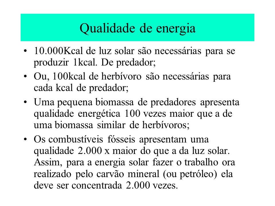 Qualidade de energia 10.000Kcal de luz solar são necessárias para se produzir 1kcal. De predador; Ou, 100kcal de herbívoro são necessárias para cada k