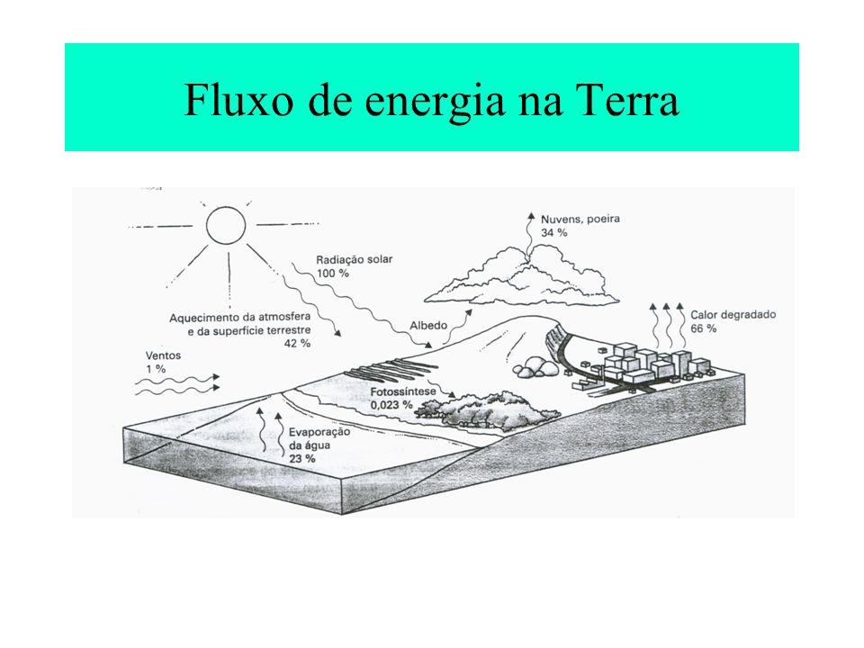 A Energia nos sistemas Ecológicos Primeira lei da termodinâmica: lei da conservação da massa e energia, a energia pode ser transformada de um tipo em outro, mas não pode ser criada nem destruída; Segunda lei, é a lei da entropia: é uma medida de energia não-disponível que resulta das transformações.
