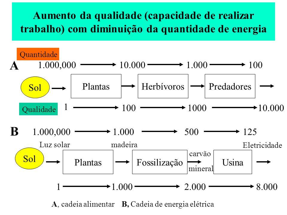 Aumento da qualidade (capacidade de realizar trabalho) com diminuição da quantidade de energia Sol HerbívorosPlantasPredadores 1.000,00010.0001.000100