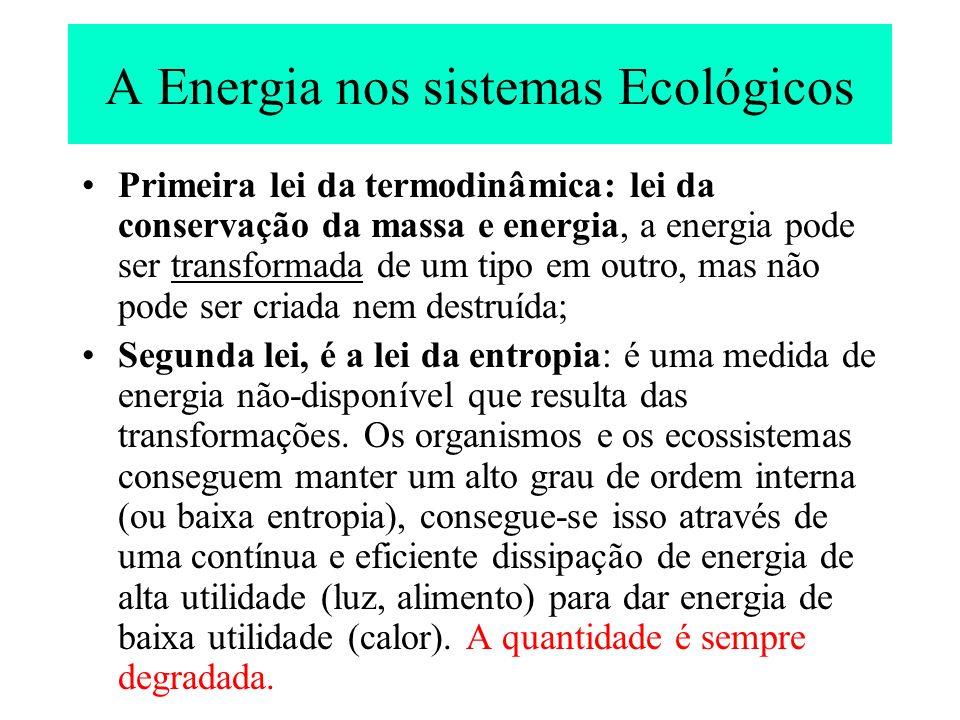 A Energia nos sistemas Ecológicos Primeira lei da termodinâmica: lei da conservação da massa e energia, a energia pode ser transformada de um tipo em