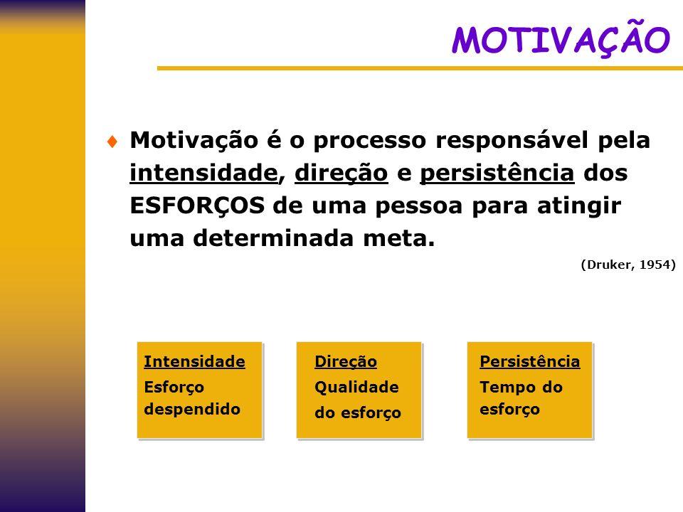 MOTIVAÇÃO Motivação é o processo responsável pela intensidade, direção e persistência dos ESFORÇOS de uma pessoa para atingir uma determinada meta. (D