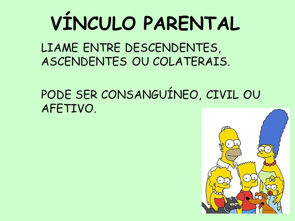 2 VÍNCULO PARENTAL LIAME ENTRE DESCENDENTES, ASCENDENTES OU COLATERAIS. PODE SER CONSANGUÍNEO, CIVIL OU AFETIVO.