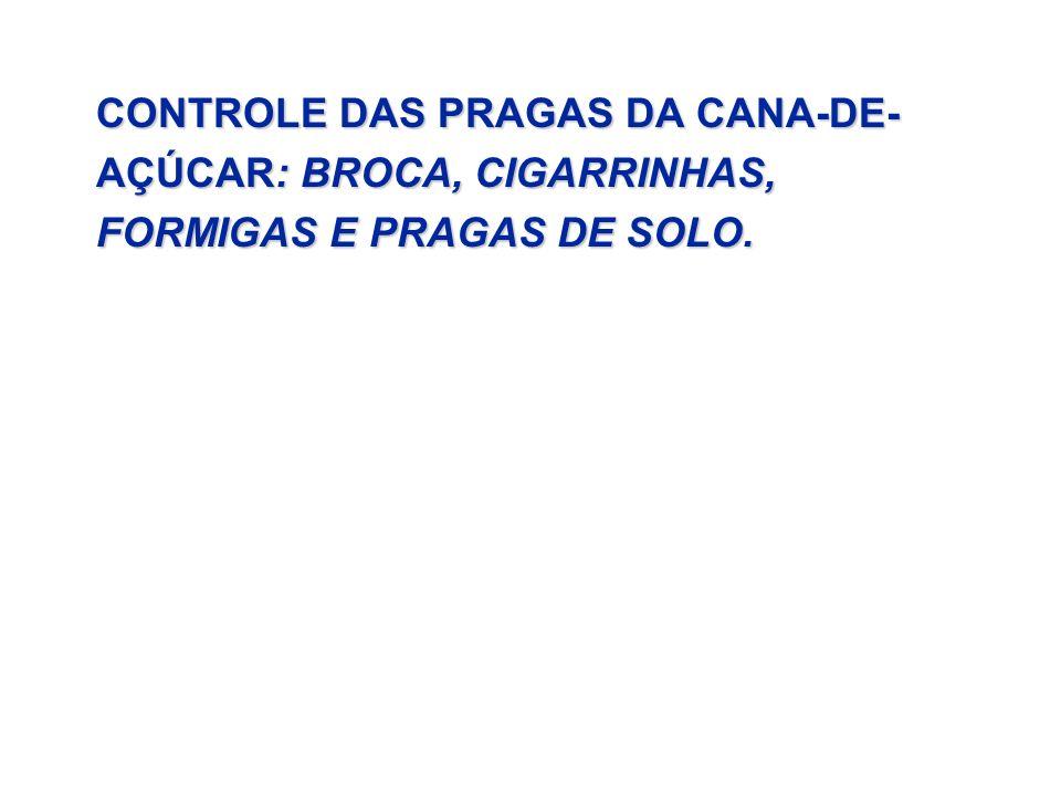 CONTROLE DAS PRAGAS DA CANA-DE- AÇÚCAR: BROCA, CIGARRINHAS, FORMIGAS E PRAGAS DE SOLO.