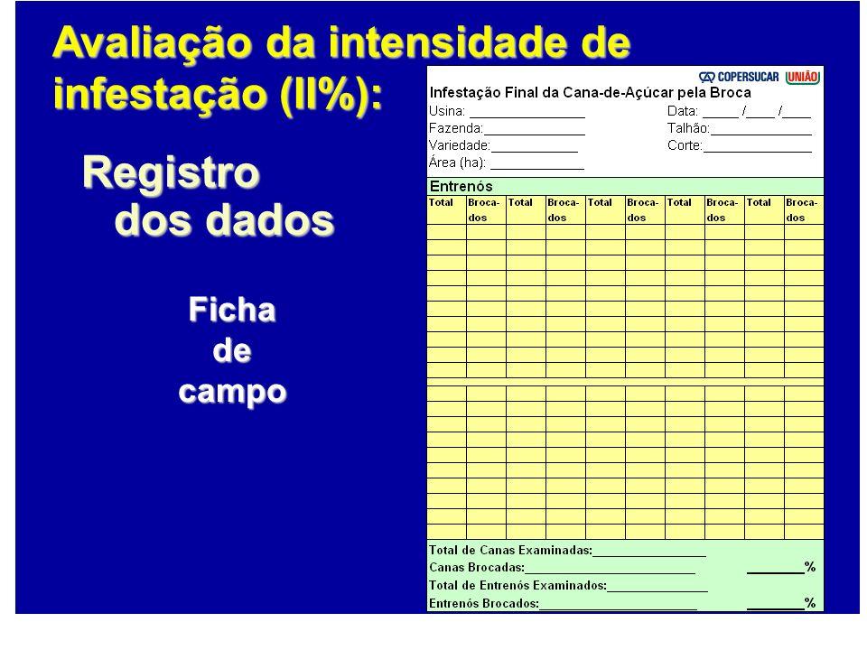 Fichadecampo Registro dos dados Avaliação da intensidade de infestação (II%):