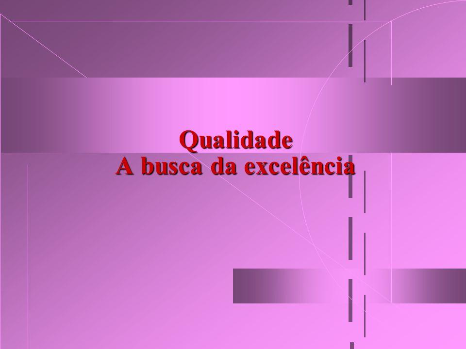 Qualidade A busca da excelência