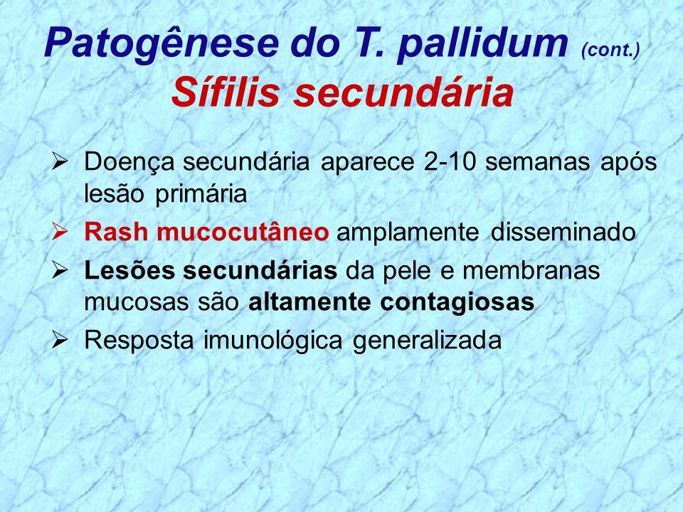 Doença secundária aparece 2-10 semanas após lesão primária Rash mucocutâneo amplamente disseminado Lesões secundárias da pele e membranas mucosas são