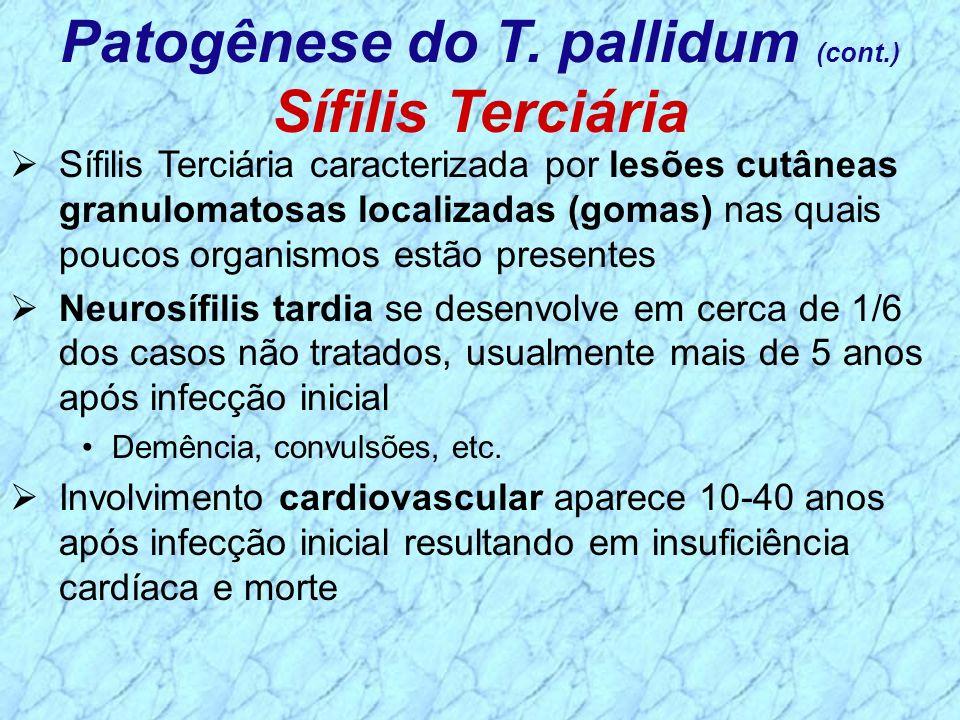 Sífilis Terciária caracterizada por lesões cutâneas granulomatosas localizadas (gomas) nas quais poucos organismos estão presentes Neurosífilis tardia