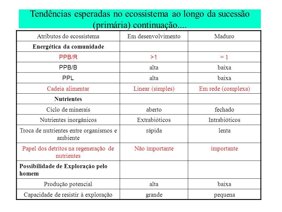 Tendências esperadas no ecossistema ao longo da sucessão (primária) continuação.... Atributos do ecossistemaEm desenvolvimentoMaduro Energética da com