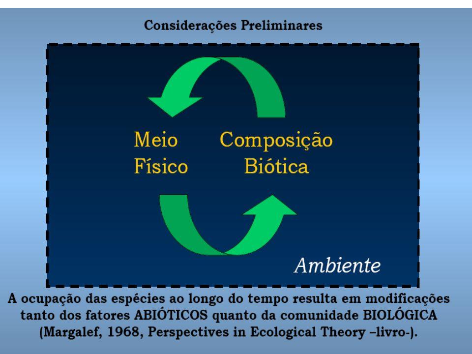 Sucessão Ecológica É o desenvolvimento de um ecossistema desde sua fase inicial até a obtenção da estabilidade e do equilíbrio entre seus componentes.