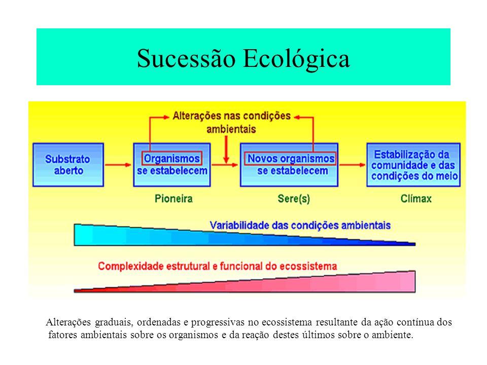 Tendências esperadas no ecossistema ao longo da sucessão (primária) (Odum 1971; Margalef 1968) Atributos do ecossistemaEm desenvolvimentoMaduro Condições ambientaisVariável e imprevisívelConstante ou previsível Populações Tamanho do indivíduopequenogrande Mecanismos de determinação de tamanho populacional abióticosBióticos, dependentes da densidade Ciclo de vidaCurto/simplesLongo/complexo CrescimentoRápido/alta mortalidadeLento/> capacidade de sobrevivância competitiva ProduçãoQuantidadeQualidade Flutuações+ pronunciadas- pronunciadas Estrutura da Comunidade Estratificação (heterogeneidade espacial) poucamuita Diversidade de espécies (riqueza)baixaalta Diversidade bioquímicabaixaalta Matéria orgânica totalpoucamuita