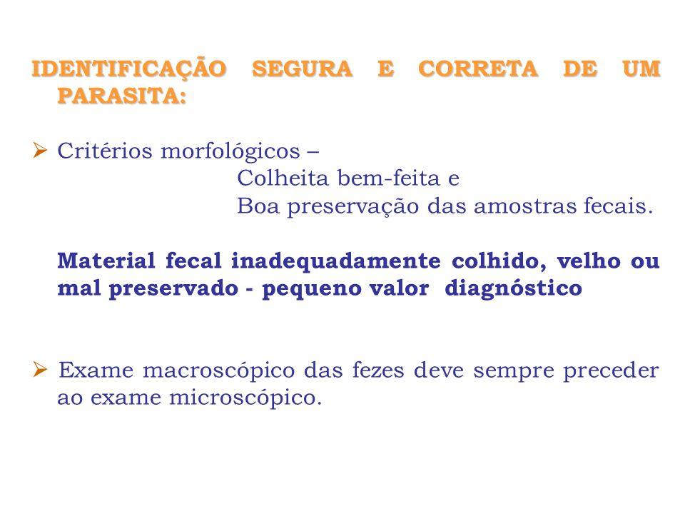 IDENTIFICAÇÃO SEGURA E CORRETA DE UM PARASITA: Critérios morfológicos – Colheita bem-feita e Boa preservação das amostras fecais. Material fecal inade