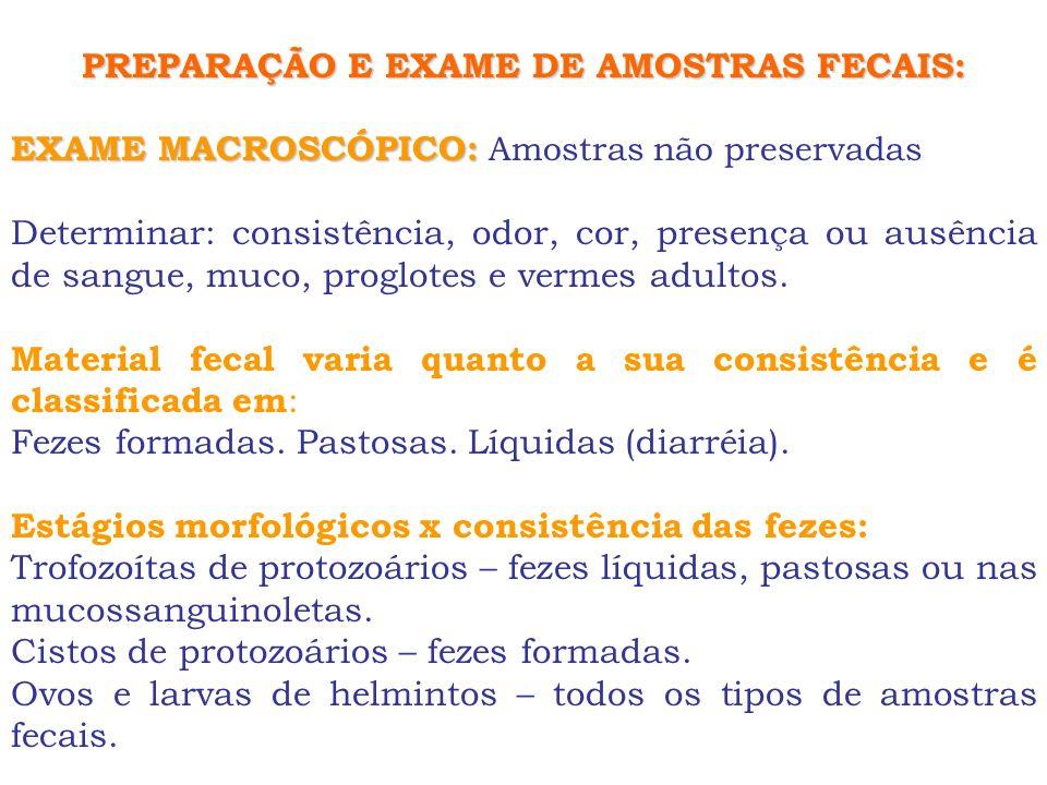 PREPARAÇÃO E EXAME DE AMOSTRAS FECAIS: EXAME MACROSCÓPICO: EXAME MACROSCÓPICO: Amostras não preservadas Determinar: consistência, odor, cor, presença
