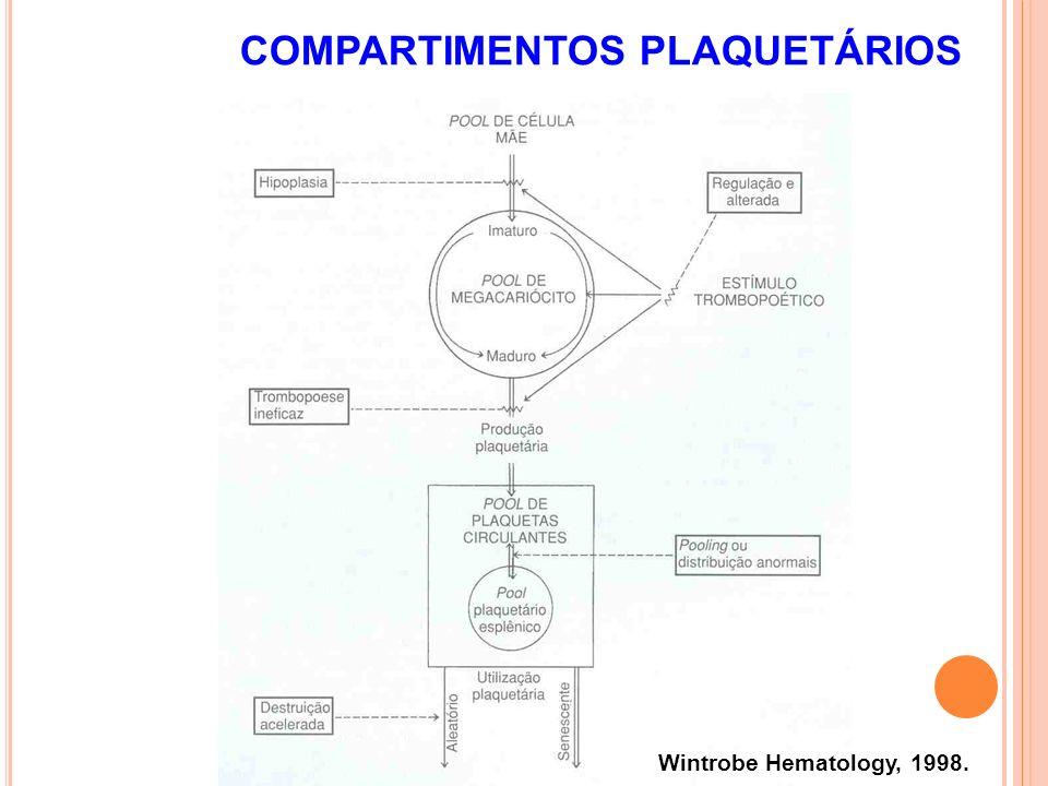 COMPARTIMENTOS PLAQUETÁRIOS Wintrobe Hematology, 1998.