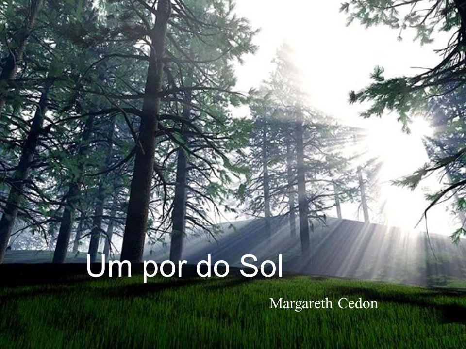 Um por do Sol Margareth Cedon