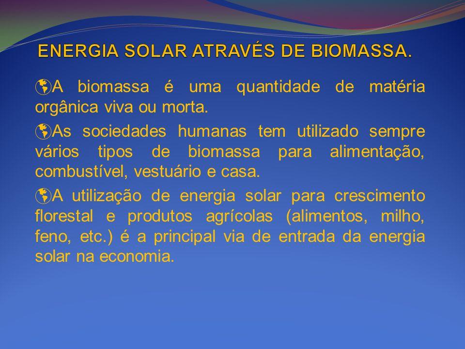 A biomassa é uma quantidade de matéria orgânica viva ou morta. As sociedades humanas tem utilizado sempre vários tipos de biomassa para alimentação, c