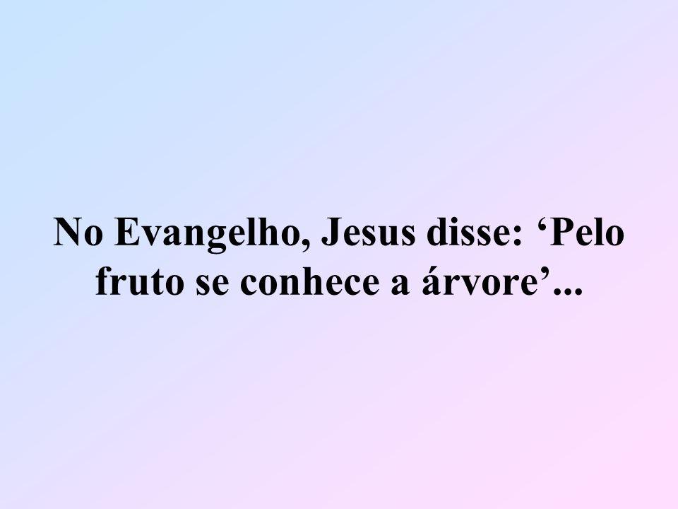No Evangelho, Jesus disse: Pelo fruto se conhece a árvore...