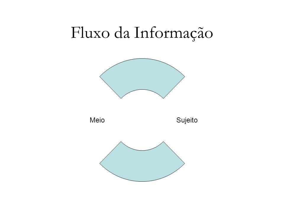 Fluxo da Informação SujeitoMeio