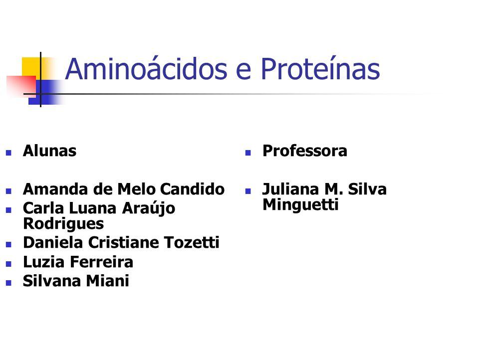 Aminoácidos Os aminoácidos são pequenos blocos nitrogenados, sendo a unidade formadora das proteínas (responsável pela formação dos músculos).