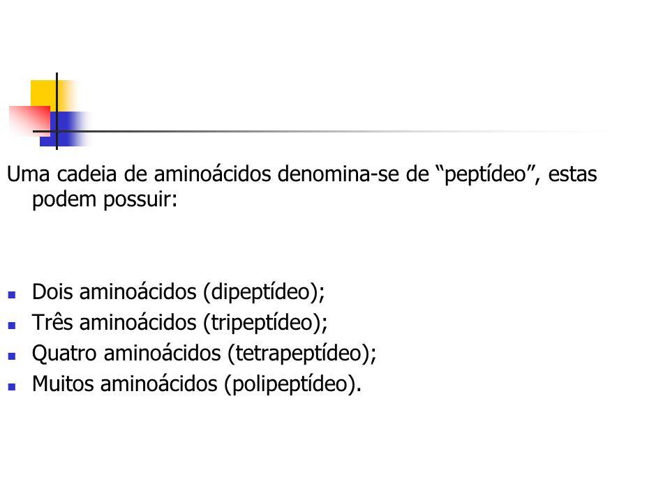 Uma cadeia de aminoácidos denomina-se de peptídeo, estas podem possuir: Dois aminoácidos (dipeptídeo); Três aminoácidos (tripeptídeo); Quatro aminoáci