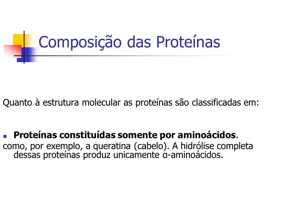 Composição das Proteínas Quanto à estrutura molecular as proteínas são classificadas em: Proteínas constituídas somente por aminoácidos. como, por exe