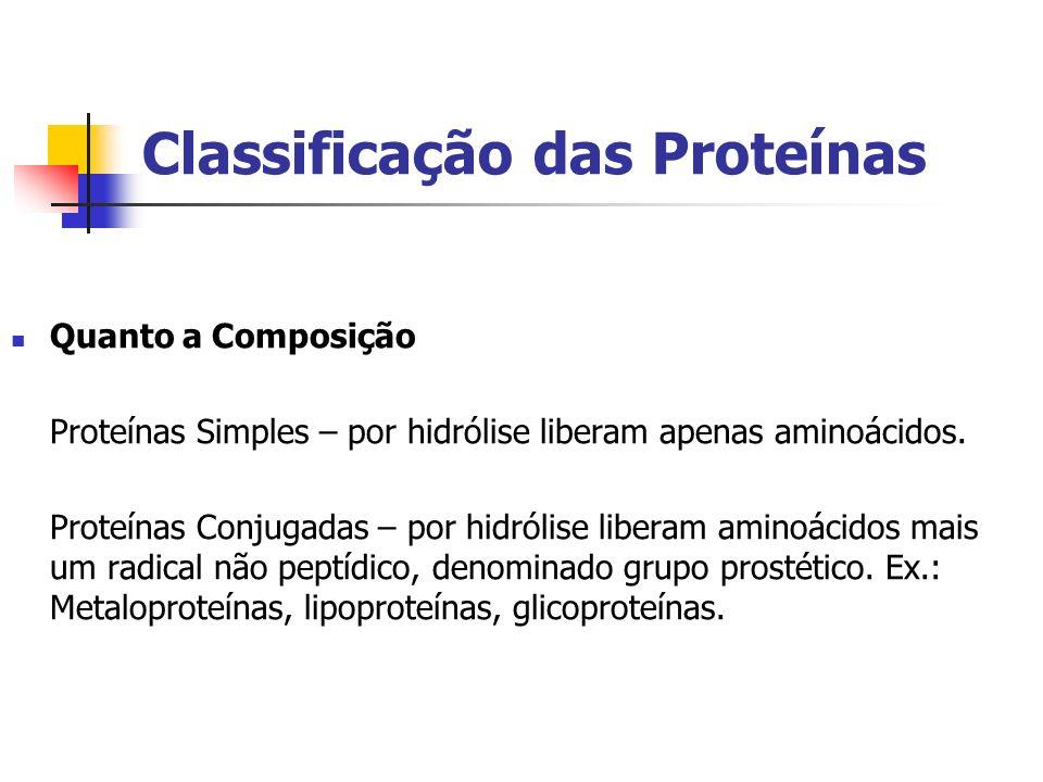 Classificação das Proteínas Quanto a Composição Proteínas Simples – por hidrólise liberam apenas aminoácidos. Proteínas Conjugadas – por hidrólise lib