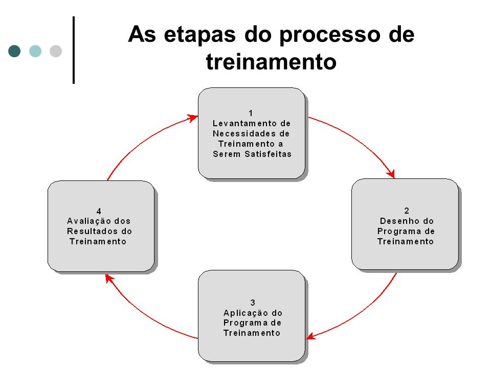 O processo de treinamento