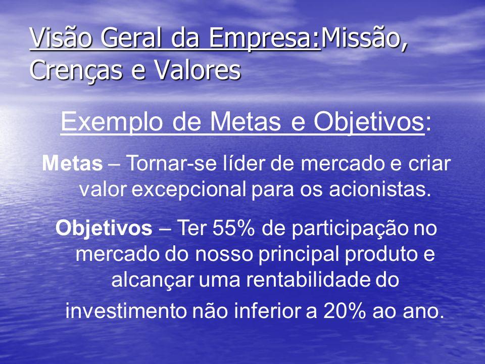 Visão Geral da Empresa:Missão, Crenças e Valores Exemplo de Metas e Objetivos: Metas – Tornar-se líder de mercado e criar valor excepcional para os ac