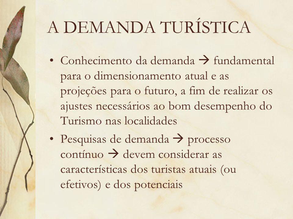 A DEMANDA TURÍSTICA Conhecimento da demanda fundamental para o dimensionamento atual e as projeções para o futuro, a fim de realizar os ajustes necess