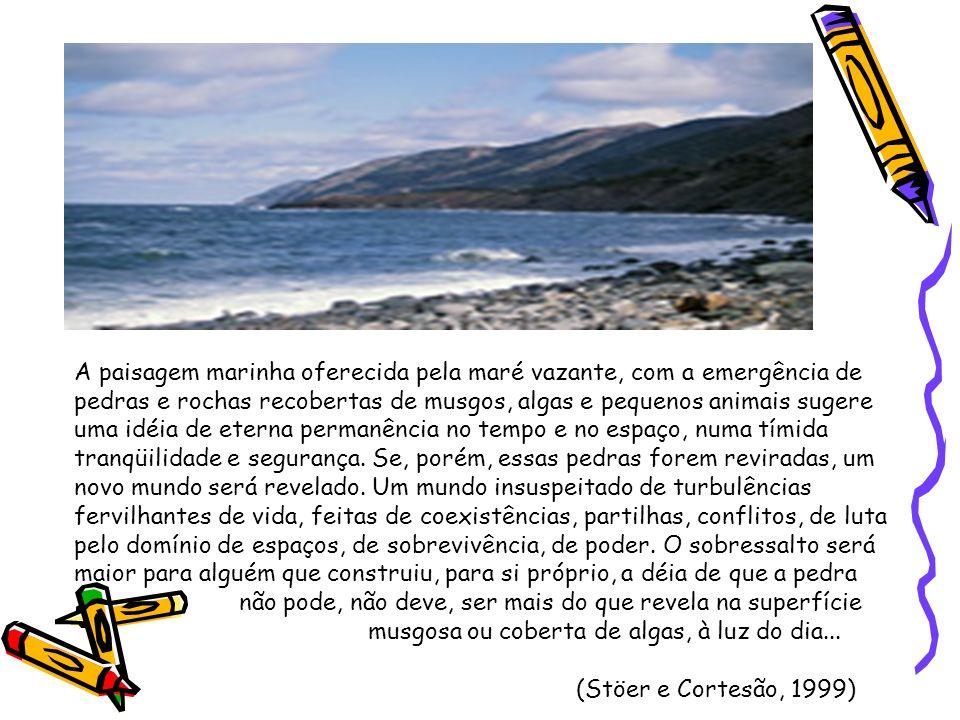 HISTÓRIA DO CONCEITO DE PÚBLICO SEPARAÇÃO DA FAMÍLIA (ESPAÇO PRIVADO) DO ESTADO (LUGAR DO POLÍTICO E...