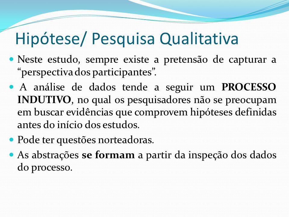 Hipótese/ Pesquisa Qualitativa Neste estudo, sempre existe a pretensão de capturar a perspectiva dos participantes. A análise de dados tende a seguir
