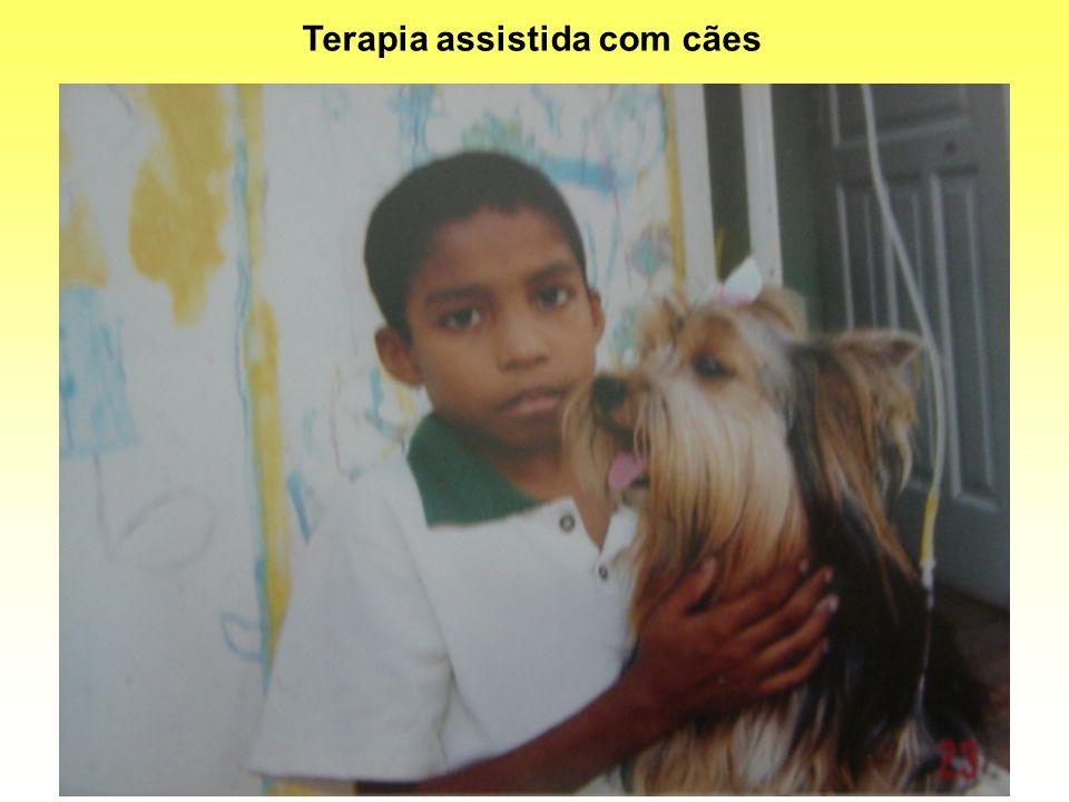 Terapia assistida com cães