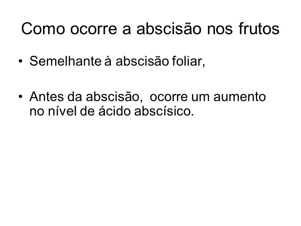 Como ocorre a abscisão nos frutos Semelhante à abscisão foliar, Antes da abscisão, ocorre um aumento no nível de ácido abscísico.