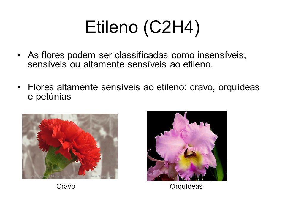 Etileno (C2H4) As flores podem ser classificadas como insensíveis, sensíveis ou altamente sensíveis ao etileno. Flores altamente sensíveis ao etileno:
