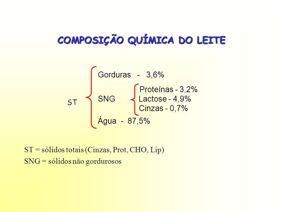 COMPOSIÇÃO QUÍMICA DO LEITE ST ST = sólidos totais (Cinzas, Prot, CHO, Lip) SNG = sólidos não gordurosos Gorduras - 3,6% Proteínas - 3,2% SNG Lactose