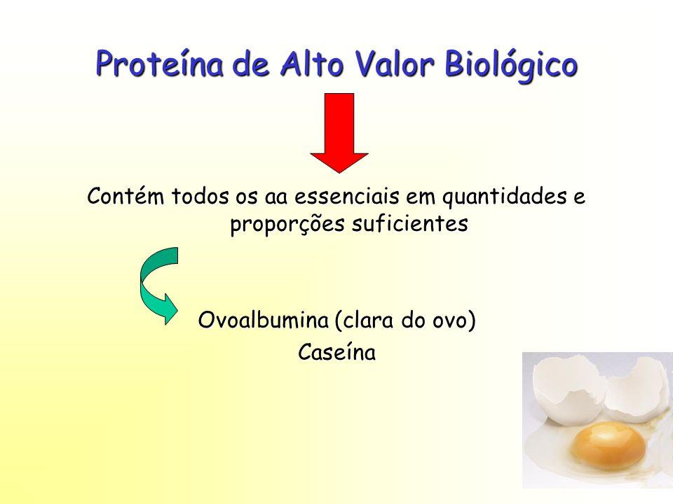 Proteína de Alto Valor Biológico Contém todos os aa essenciais em quantidades e proporções suficientes Ovoalbumina (clara do ovo) Caseína