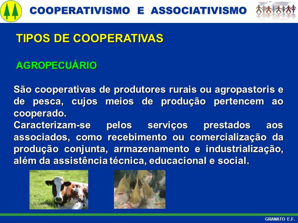 COOPERATIVISMO E ASSOCIATIVISMO COOPERATIVISMO E ASSOCIATIVISMO GRANATO E.F. AGROPECUÁRIO AGROPECUÁRIO São cooperativas de produtores rurais ou agropa