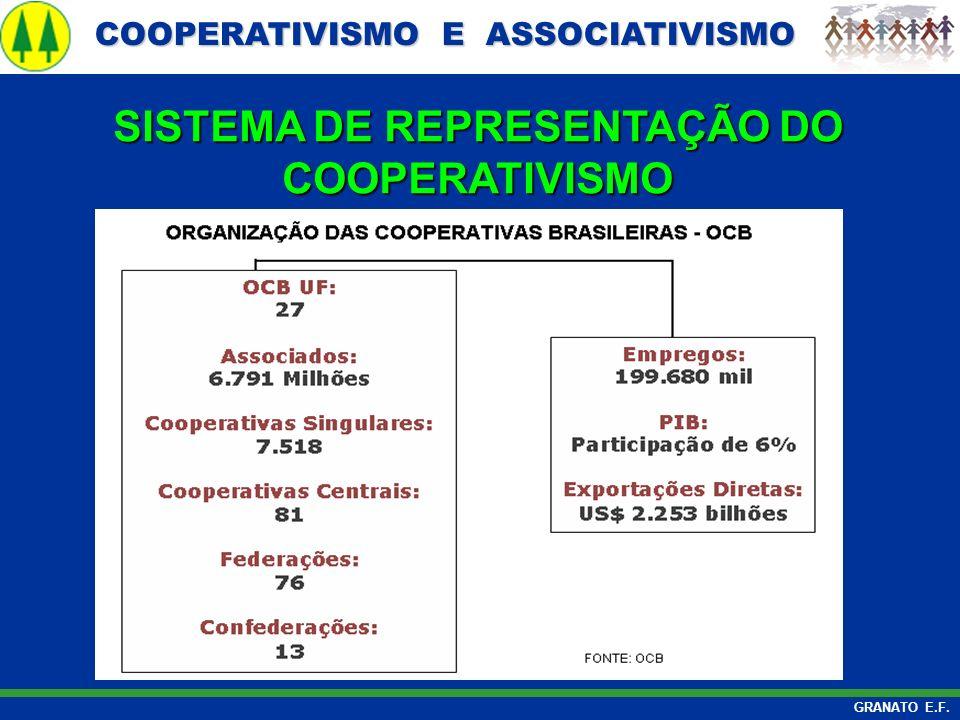 COOPERATIVISMO E ASSOCIATIVISMO COOPERATIVISMO E ASSOCIATIVISMO GRANATO E.F. SISTEMA DE REPRESENTAÇÃO DO COOPERATIVISMO